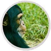 Chimpanzee Profile Round Beach Towel