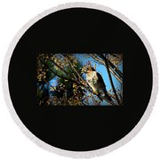 China Berry Hawk Round Beach Towel
