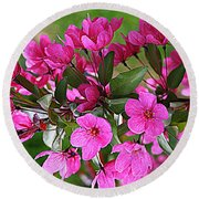 Chinese Apple Blossoms Round Beach Towel