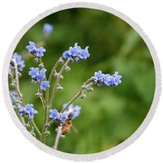 Chinese Forget Me Nots Round Beach Towel