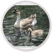Chinese Swan Goose And Gosling Round Beach Towel