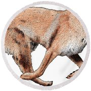 Chinook Round Beach Towel