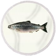 Chinook Salmon Round Beach Towel