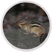 Chipper Round Beach Towel