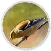 Chirping Gold Finch - Painted Effect Round Beach Towel