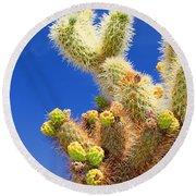 Cholla Cactus I By Diana Sainz Round Beach Towel