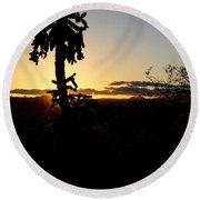 Cholla Cactus Sunset Round Beach Towel
