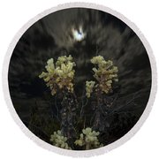 Cholla Light - Joshua Tree National Park Round Beach Towel