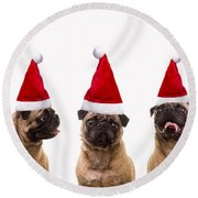 Christmas Caroling Dogs Round Beach Towel