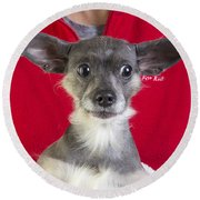 Christmas Dog Round Beach Towel