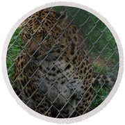 Christmas Leopard II Round Beach Towel