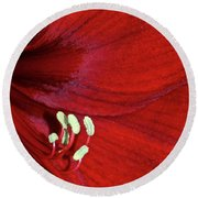 Christmas Red Round Beach Towel