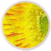 Chrysanthemum Flower Closeup Round Beach Towel
