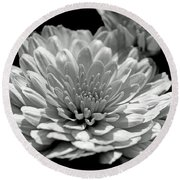 Chrysanthemum In Light And Shadow Round Beach Towel