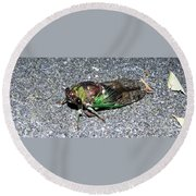 Cicada Round Beach Towel