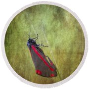 Cinnabar Moth Art Texture Wall Decor. Round Beach Towel