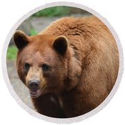 Cinnamon Black Bear Round Beach Towel