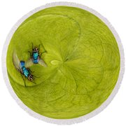 Circle Of Flies Round Beach Towel