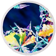 Citric Acid Microcrystals Color Abstract Art Round Beach Towel