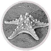 Classy Asteroidea Round Beach Towel