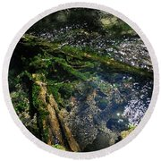 Clearwater Falls Series 17 Round Beach Towel