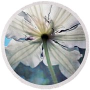 Clematis In Morning Sun Round Beach Towel