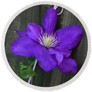 Clematis On A String Round Beach Towel