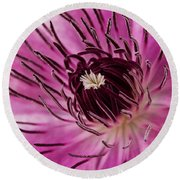 Clematis Up Close Round Beach Towel