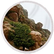 Cling Tight Round Beach Towel