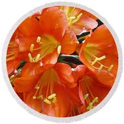 Music Please Clivia Round Beach Towel