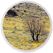 Cloaked In Yellow Round Beach Towel