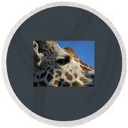 The Giraffe's Eye Round Beach Towel