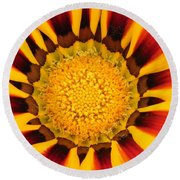 Close Up Marigold Round Beach Towel