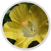 Close Up Of A Hibiscus...   # Round Beach Towel