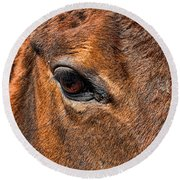 Close Up Of A Horse Eye Round Beach Towel by Paul Ward