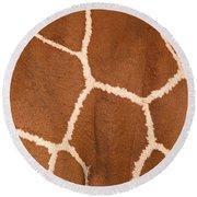Close-up Of A Reticulated Giraffe Round Beach Towel