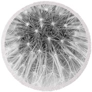 Close-up Of Dandelion Seeds Round Beach Towel