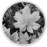 Close Up Of Leaves Round Beach Towel