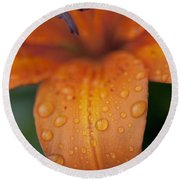 Close-up Of Orange Lily Flower After Round Beach Towel