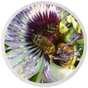 Close Up Of Passion Flower With Honey Bee  Round Beach Towel