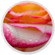 Close Up Of Pink Rose Petails Covered Dew Round Beach Towel