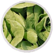Closeup Of Boston Lettuce Round Beach Towel