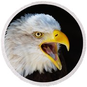 Closeup Portrait Of A Screaming American Bald Eagle Round Beach Towel
