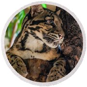 Clouded Leopard 2 Round Beach Towel
