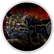 Clouded Leopard Two Round Beach Towel