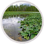 Clouds Among The Lily Pads In Swan Lake In Grand Teton National Park-wyoming  Round Beach Towel
