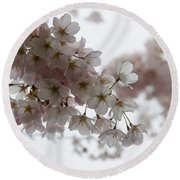 Clouds Of Soft Pink Blossoms - A Tribute To Spring Round Beach Towel