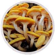 Cluster Fungi Round Beach Towel