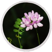 Cluster Of Crown Vetch Round Beach Towel