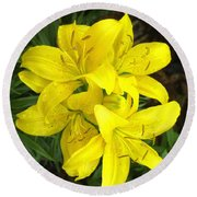 Cluster Of Yellow Lilly Flowers In The Garden Round Beach Towel